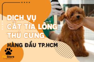 Dịch vụ cắt tỉa lông hàng đầu TP.HCM