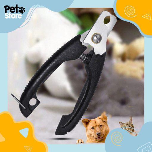 kem-cat-mong-3-pet-store
