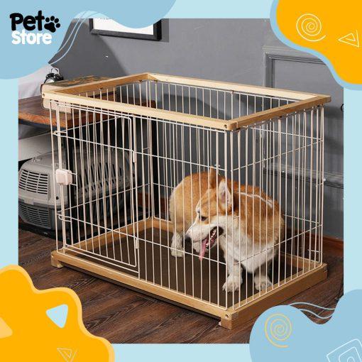 chuong-go-2-pet-store