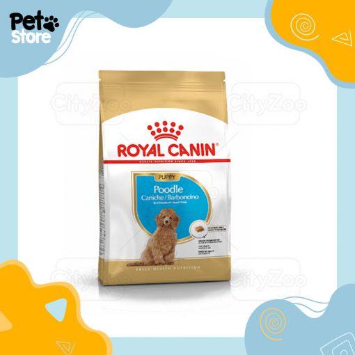 do-an-royal-pet-store